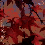 BMS-Autumn