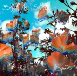 BMS-Spring Cover